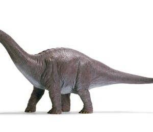 Long Neck Dinosaur – Apatosaurus