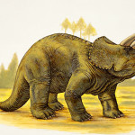 pictures of dinosaurs – Triceratops