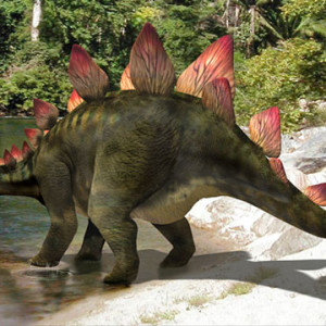 stegosaurus fun facts for kids