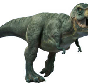 t-rex facts and pictures for kids