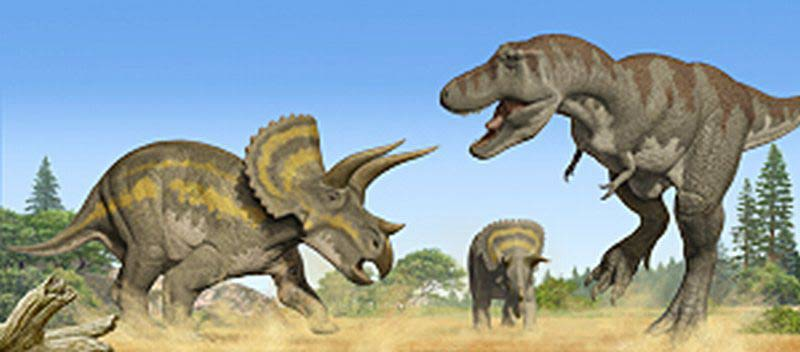 Triceratops Facts sheet