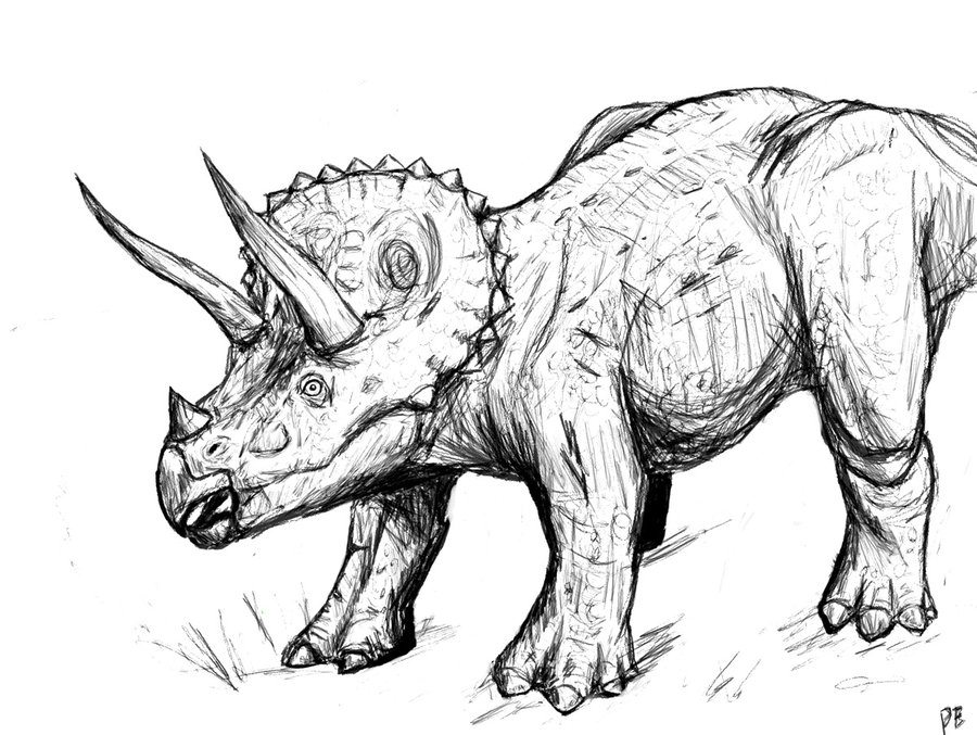 triceratops coloring pages free