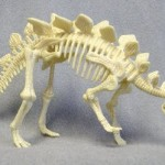 dinosaur bones pictures for kids Stegosaurus