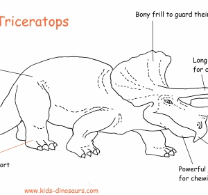 funny dinosaur facts