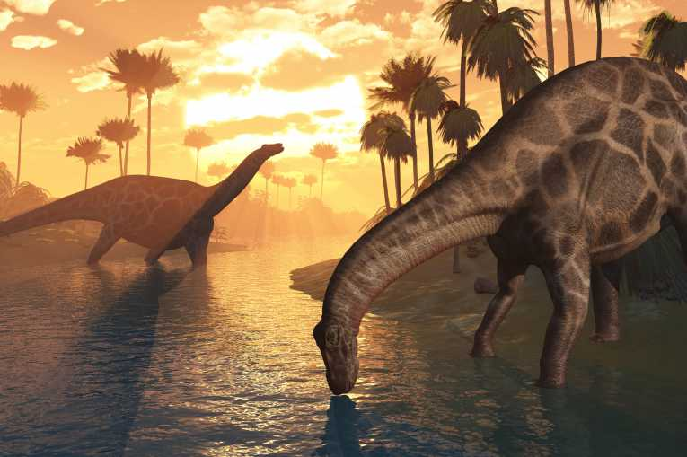 Dinosaurs Extinction What Killed The Dinosaurs