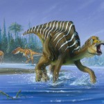 pictures of dinosaurs – Hadrosaurs