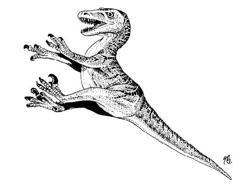Free Coloring Pages Of Velociraptor