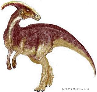 pictures of dinosaurs - Parasaurolophus