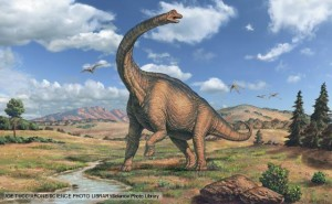 Pictures of Dinosaurs - Sauropods