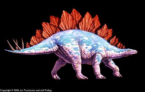 interesting facts about stegosaurus