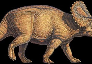 facts about triceratops for children