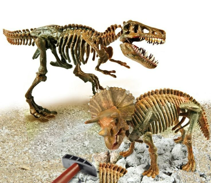 dinosaur skeleton excavation kit