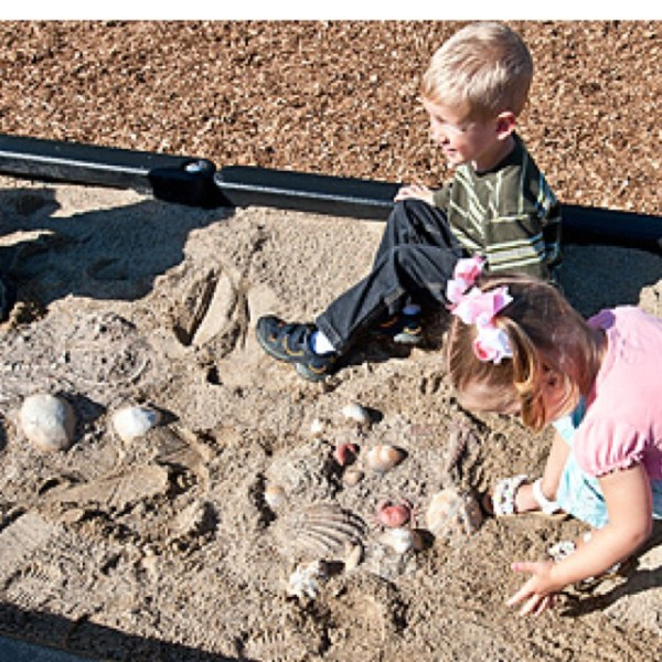 dinosaur science activities for kindergarten : Fossil Dig