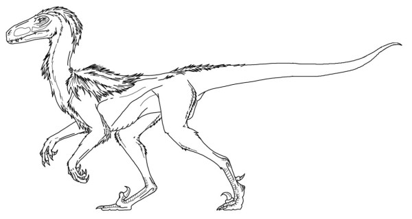 Feathered Deinonychus coloring page