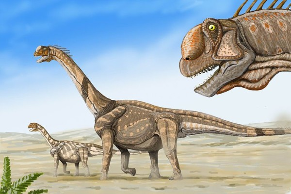 camarasaurus fun facts