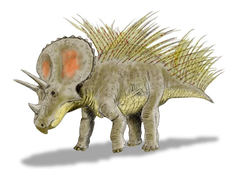 Pics of Dinosaurs – Triceratops