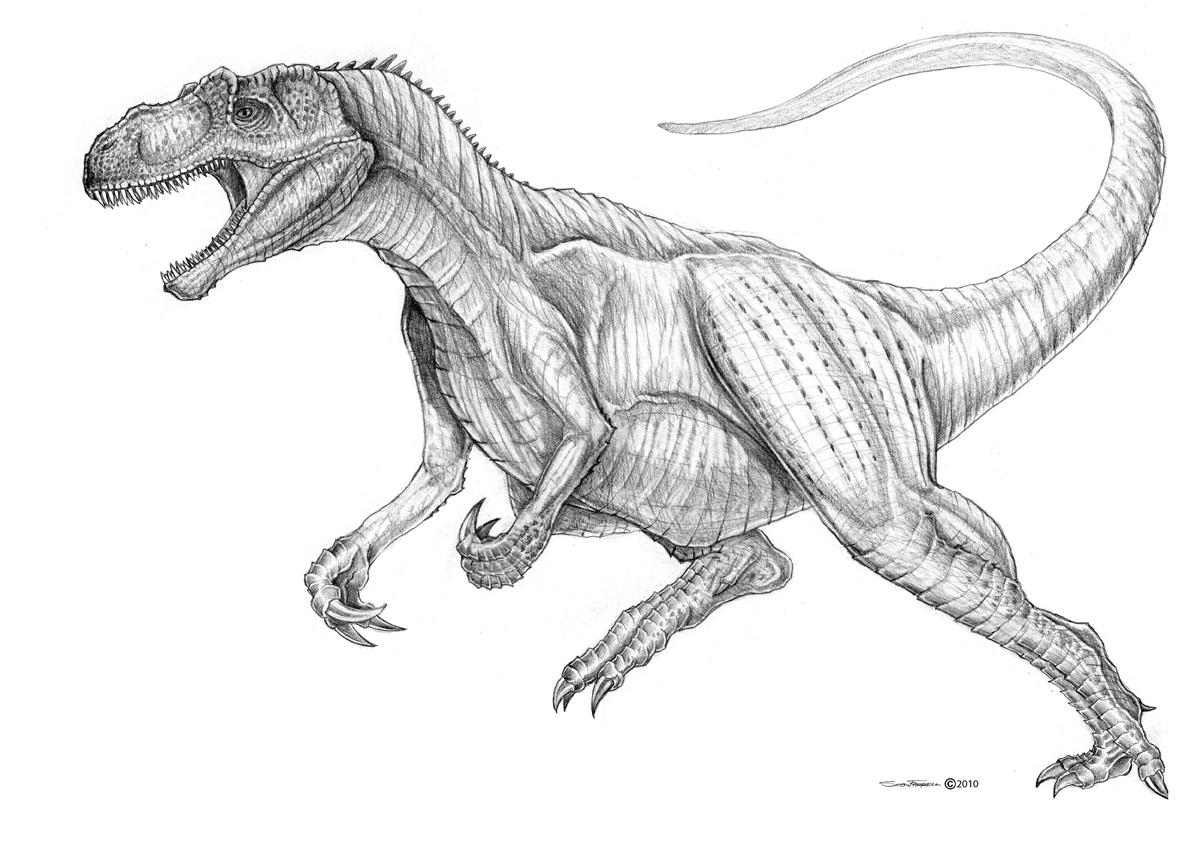 Cool Allosaurus Coloring Pages Free
