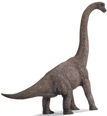 Types of Dinosaurs – Brachiosaurus