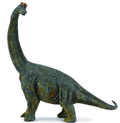 long neck dinosaur facts – Brachiosaurus
