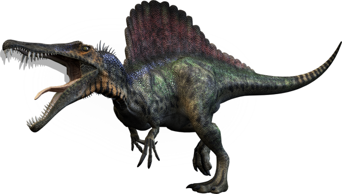 spinosaurus facts information