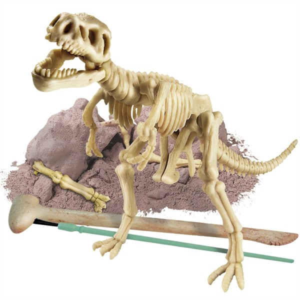 Selecting Dinosaur Excavation Kits