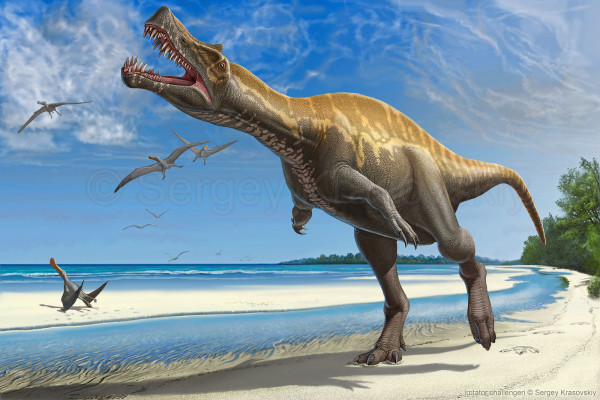 Irritator Lived in South America