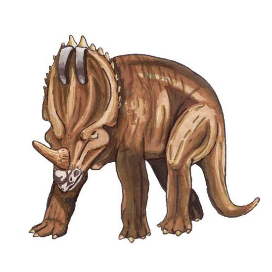 Centrosaurus facts for kids