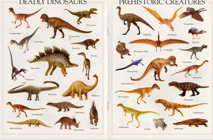 all types of dinosaurs with pictures