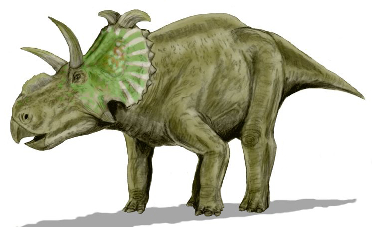 agujaceratops facts sheets