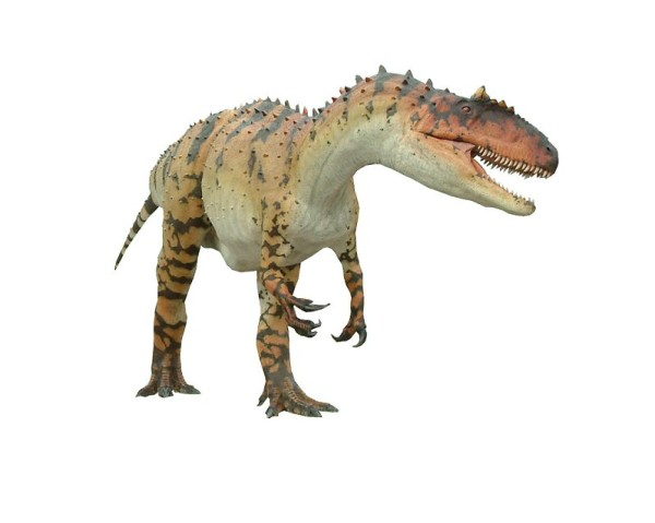 Allosaurus Facts