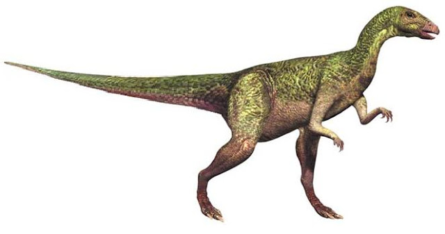 Camptosaurus facts sheets