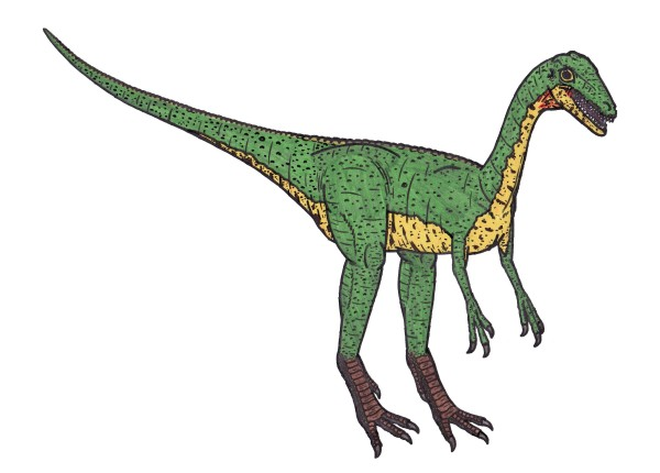 Compsognathus facts for kids