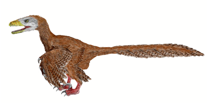 Deinonychus Dinosaur Facts
