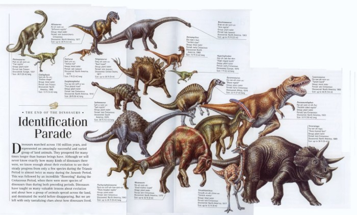 dinosaurs in the cretaceous time period