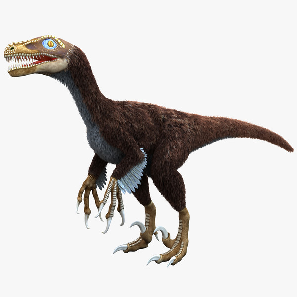 Dromaeosaurus Dinosaur Facts