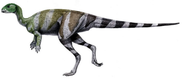 Abrictosaurus facts for Kids