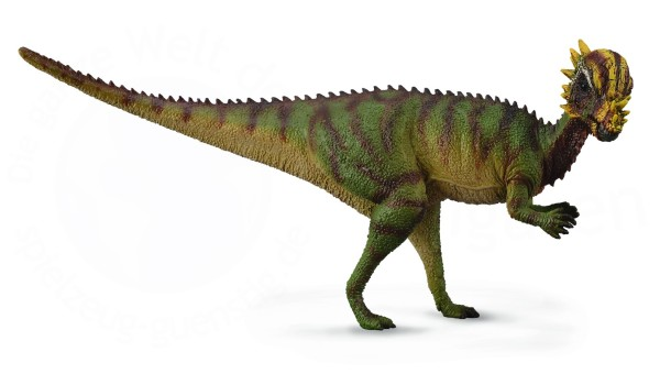 pachycephalosaurus interesting facts