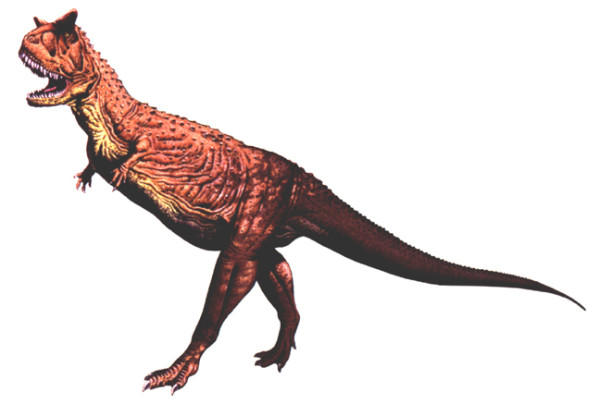 Carnotaurus Facts Sheets