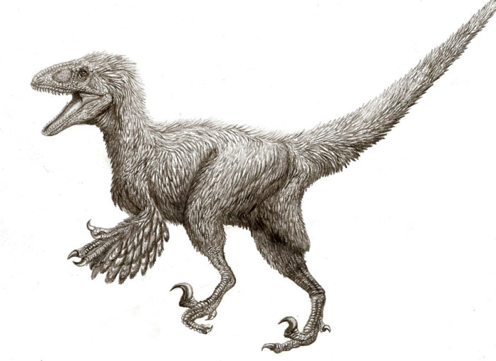 deinonychus facts for kids