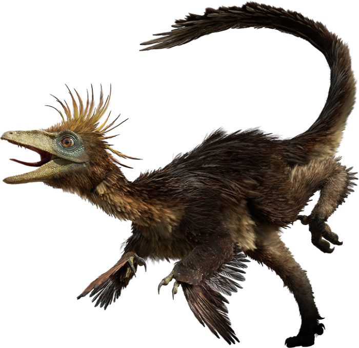 Hesperonychus facts sheets