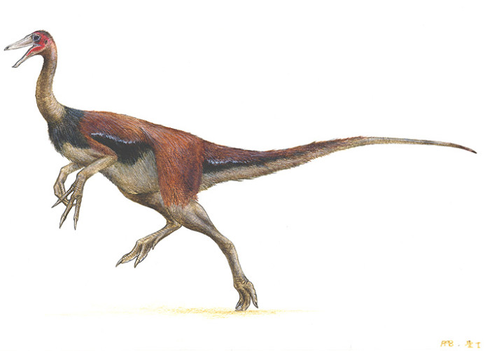gallimimus dinosaur facts