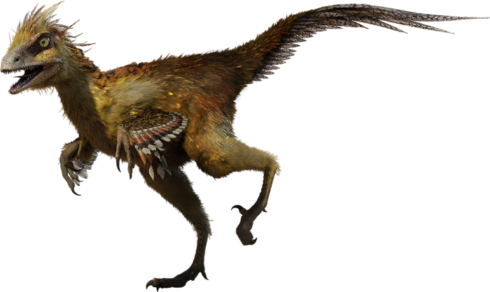 Hesperonychus facts for kids