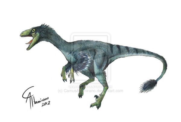 troodon formosus facts