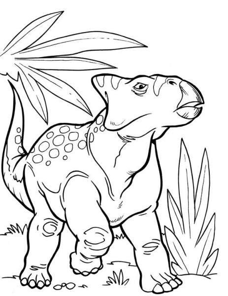 Ceratopsian from Late Cretaceous Period in Dinosaur Coloring Page