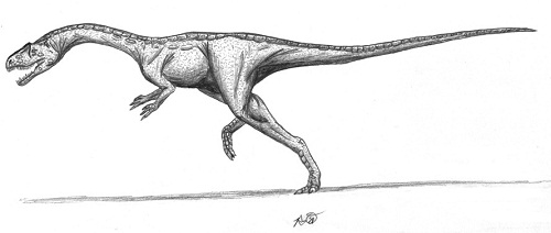 Chindesaurus Height
