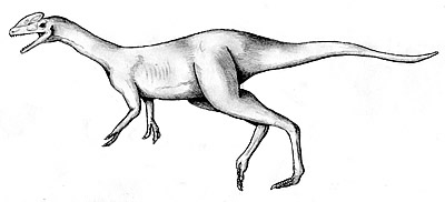 Guanlong Facts Sheets