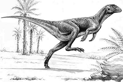 Heterodontosaurus Fact for Kids