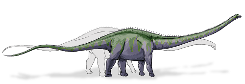 Supersaurus dinosaur