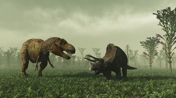 T-Rex vs Triceratops who would win
