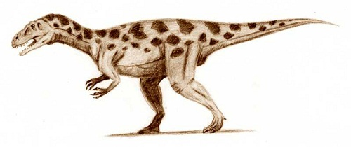 Torvosaurus Height
